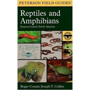 A FIELD GUIDE TO REPTILES AND AMPHIBIANS OF EASTERN AND CENTRAL NORTH AMERICA Conant R.  1975