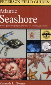 A FIELD GUIDE TO THE ATLANTIC SEASHORE: FROM THE BAY OF FUNDY TO CAPE HATTERAS Gosner K.L.  1979