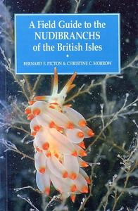 A FIELD GUIDE TO THE NUDIBRANCHS OF THE BRITISH ISLES Picton B.E. Morrow C.C. 1994
