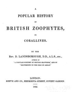 A POPULAR HISTORY OF BRITISH ZOOPHYTES OR CORALLINES Landsborough D.  1852