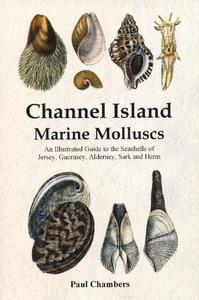 CHANNEL ISLAND MARINE MOLLUSCS, an illustrated guide to the seashells of Jersey, Guernsey, Alderney, Sark and Hern Chambers P.  2008