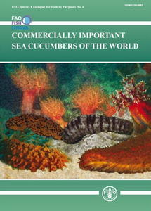 COMMERCIALLY IMPORTANT SEA CUCUMBERS OF THE WORLD Purcell S.W. Samyn Y., Conand C. 2012