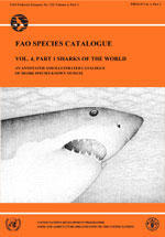FAO SPECIES CATALOGUE, VOLUME 4, SHARKS OF THE WORLD, AN ANNOTED AND ILLUSTRATED CATALOGUE OF SHARKS SPECIES KNOWN TO DATE PART 1 - HEXANCHIFORMES...