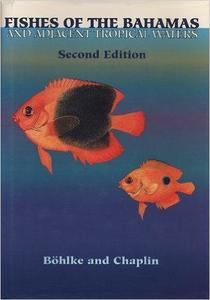 FISHES OF THE BAHAMAS AND ADJACENT TROPICAL WATERS Böhlke J. Chaplin C. 1992