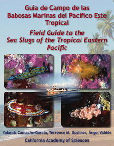 GUÍA DE CAMPO DE LAS BABOSAS MARINAS DEL PACÍFICO ESTE TROPICAL FIELD GUIDE TO THE SEA SLUGS OF THE TROPICAL EASTERN PACIFIC Camacho-García Y. Gosl...