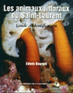 LES ANIMAUX LITTORAUX DU SAINT LAURENT : GUIDE D'IDENTIFICATION Bourget E.  1997