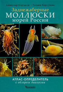 Моллюски морей России (traduction DORIS : Mollusques des mers russes) Martynov A., Korshunova T.  2011