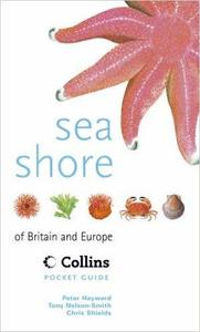 SEA SHORE OF BRITAIN AND EUROPE Hayward P. Nelson-Smith T., Shields C. 1996