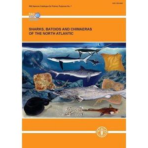 SHARKS, BATOIDS, AND CHIMAERAS OF THE NORTH ATLANTIC Ebert D A. Stehmann M F W 2013